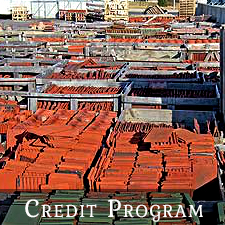 Concrete Roof Tiles Credit Program