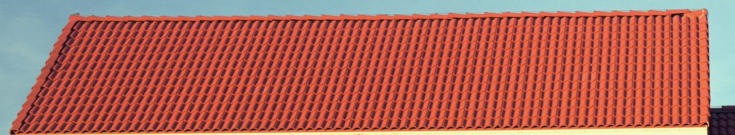 Salvaged Roof Tile